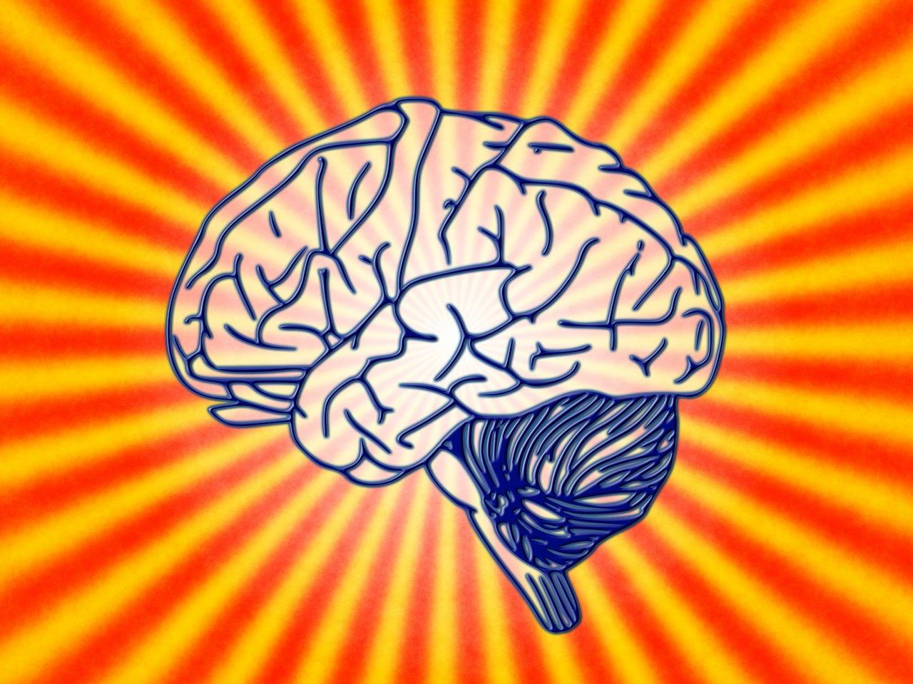 Cerveau trauma